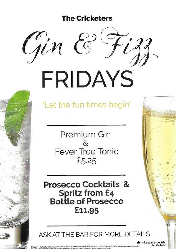 <h2>Gin & Fizz Friday's*</h2>